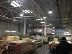 Lumivesta-apsvietimas-medienos-gamykloje